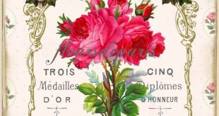 Vintage Shabby Chic Paris Rose Fabric Block Quilting Sewing Crafting FB 236 #Han...