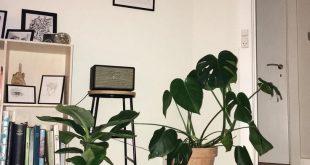 15+ Beauteous Elegant Shabby Chic Living Room Ideas